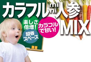 プランターでカラフル mini 人参 MIX>